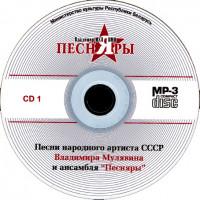 Внешний вид диска